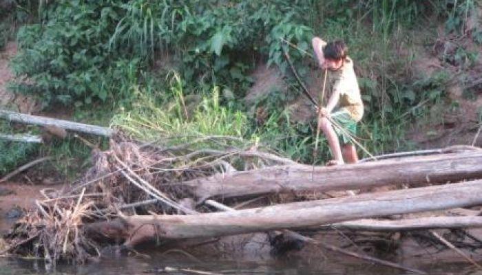 Tsimane' Amazonian Panel Study (TAPS)