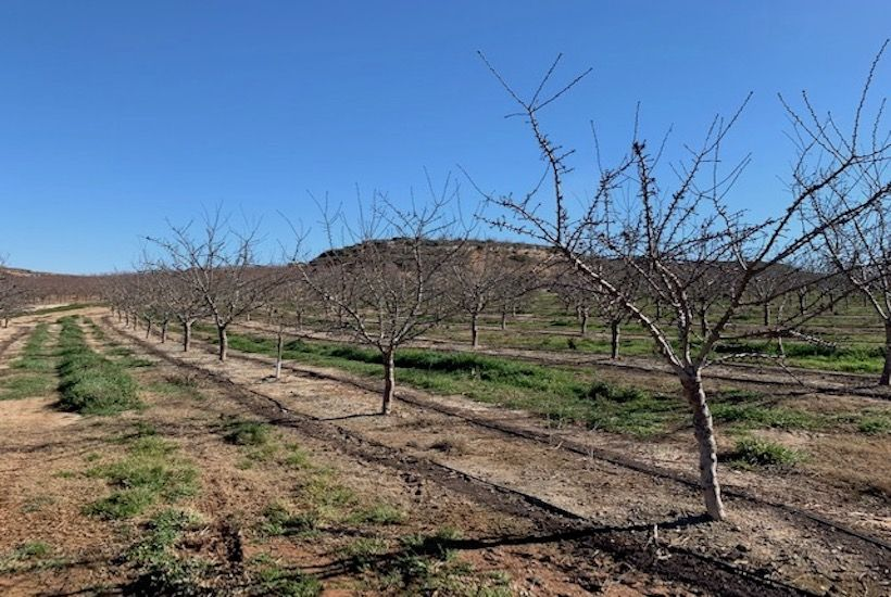 Socio-Environmental Vulnerability in Rural Spain - New project funded by La Caixa Foundation